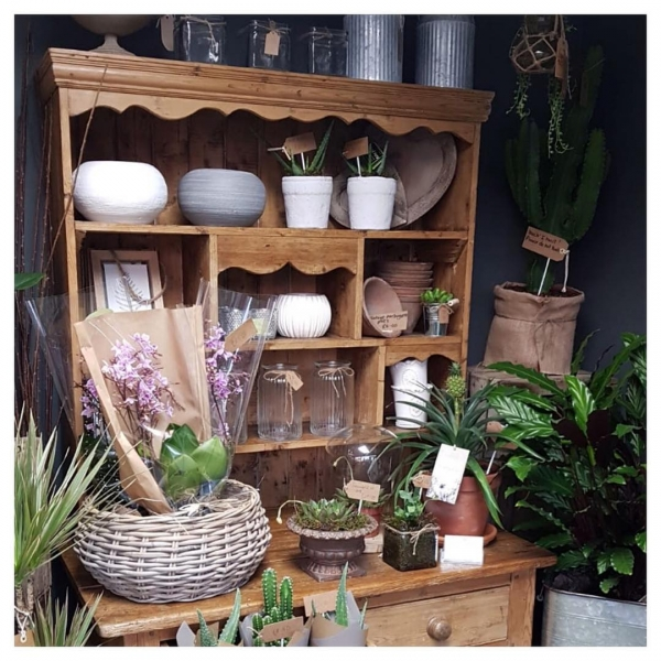 When you have no room at home buy for your shop! 😍 Another yummie purchase!.. ...#upcycle #home #work #shop #retail #flowershop #flowers #project #plants #containers #cacti #orchid #victoriajaneflowers #burnham #taplow #maidenhead #windsor #insta
