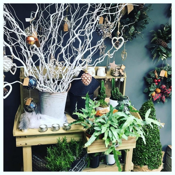 Christmas in full swing! 🎄 Unpacking lots of new yummy goodness...#flower #christmas #supportlocal #insta #shop #retail #tistheseason #snow #white #willow #decorationideas #bells #wreath #burnham #maidenhead #windsor #slough #victoriajaneflowers