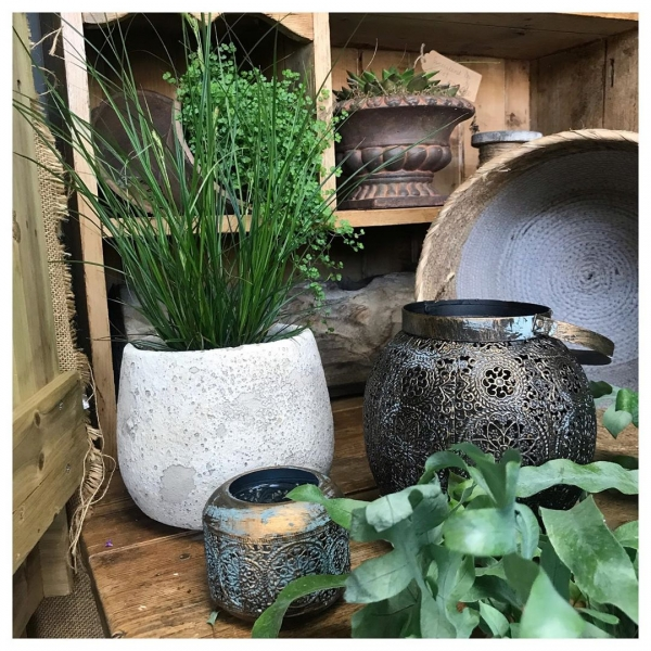 I do love a re stock and merchandise 🏡 🌱 Scrumptious new pots, baskets, plants and containers in stock ❤️..#home #house #homesweethome #love #plants #flowers #pot #homemade #locallysourced #greenupyourgaff #victoriajaneflowers #insta #instaflower #instaflorist #underthefloralspell #homesweethome #supportlocal #shoplocal #independantwoman #independantshop #burnham #maidenhead #slough #windsor #taplow #ascot #buckinghamshireflorist #berkshireflorist #bucks #berks