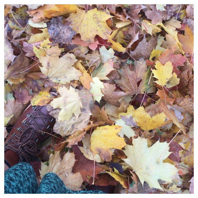 'Come forth into the light of things, let nature be your teacher' 🌿🍁🍂#inspiredbynature....#autumnal #leaves #brown #orange #yellow #red #purple #autumnwalks #winteriscoming #love #season #bestseasonoftheyear