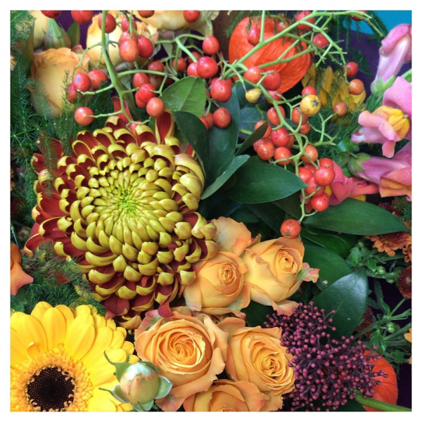 We can't get enough of the current autumn hues 🍂 🍁..#autumn #autumnvibes🍁 #orange #red #green #purple #Love #flowers #flowershop #lovemyjob #smile #happy #cold #victoriajaneflowers