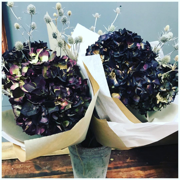 Dried bouquets of Hydrangea and Thistle 😍 £10.00I just love dried flowers and predict a huge revival in the trend! 🌿..#driedflowers #liveforever #hydrangea #thistle #bunch #flowerbunch #flowers #flowershop #scrummy #underthefloralspell #victoriajaneflowers #floristshop #shoplocal #collections #delivery #burnham #windsor #maidenhead