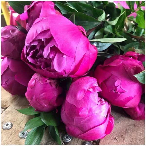 Gosh how I've missed the fleurs! 💕🌿 How dreamy are these beautiful Peonies (they are a red Sarah Bernhardt) We are getting ready for a soft opening in July but for now I'm so pleased to of been able to get some work in during Peony season! Please get in contact for more information of how we are currently operating